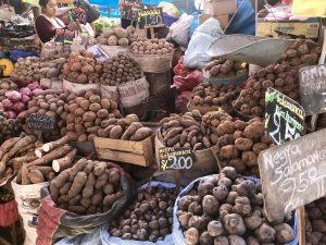 Welche Kartoffel darf es sein?
